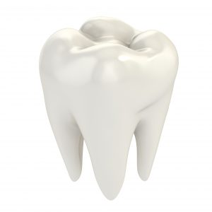 white tooth crown polished bright